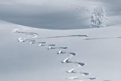 Климатолог заявил, что грядущей зимой в России ожидается высокая вероятность природных аномалий