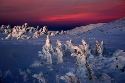 В России ожидается высокая вероятность природных аномалий зимой