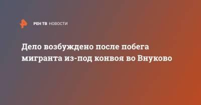 Дело возбуждено после побега мигранта из-под конвоя во Внуково