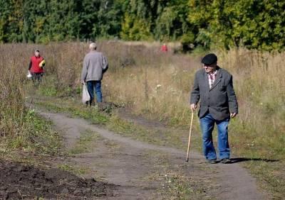 С 2022 году в России изменится порядок выплаты пенсий