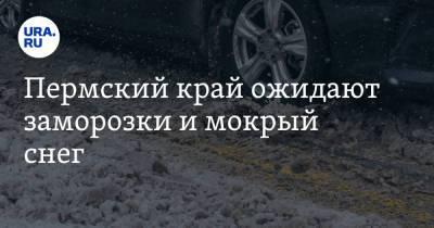 Пермский край ожидают заморозки и мокрый снег