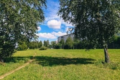 Зеленая зона на проспекте Строителей в Смоленске не превратится в рынок